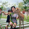宜蘭親子景點|與小鹿斑比近距離約會,友善的體驗農場|張美阿嬷農場